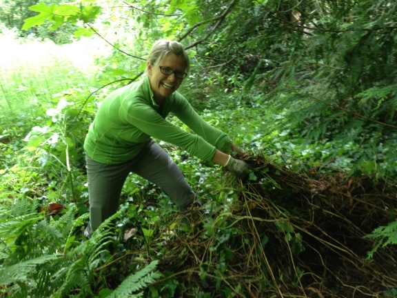 steph pulling ivy